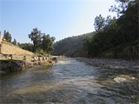 تلوث مياه سد الملك طلال
