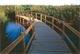 الحكومة تخصص أراض في الرويشد والأزرق لإنشاء محميتين