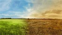 في 2030.. المناخ يعود لما كان عليه قبل 3 ملايين سنة