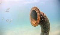 ازدياد عدد محطات تحلية المياه يُشكّل خطرًا على الحياة البحرية