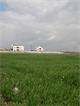 الزحف العمراني يطوي الاراضي الزراعية في مادبا