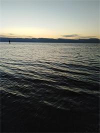 الأمونيا يهاجم نسيم البحر في العقبة