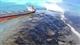 تسرب نفطي كبير يهدد جزر موريشيوس بكارثة بيئية حقيقية