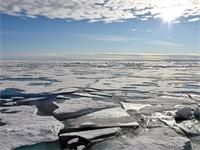 فيديو صادم يُظهر كارثة بيئية مدمّرة في القطب الشمالي