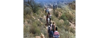 متخصصون: «السياحة البيئية» بديل مناسب في ظل جائحة كورونا