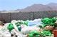 ورشة توعوية للتعريف بأخطار النفايات البلاستيكية بالعقبة